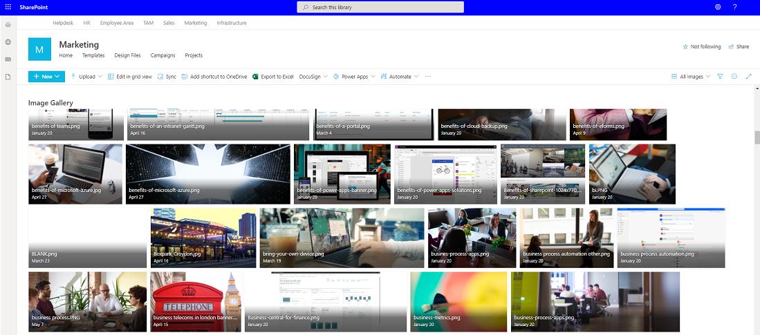 Sharepoint digital asset management